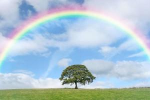 rainbow02
